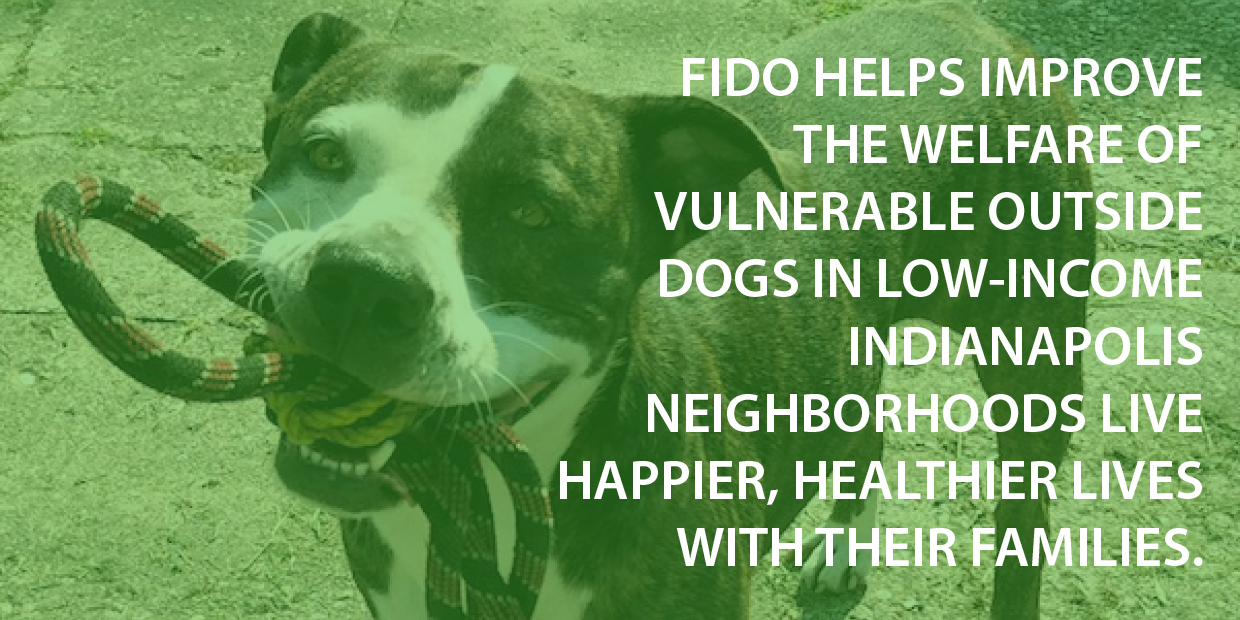 FIDO Brand Purpose